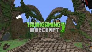 Nový Minecraft server
